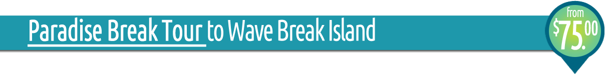 Paradise Break Tour - Kayak, Snorkel and Dine at Wave Break Island