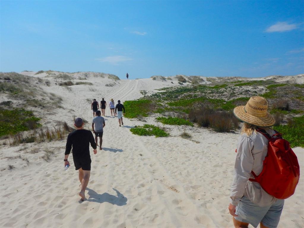 Excursion Gold Coast