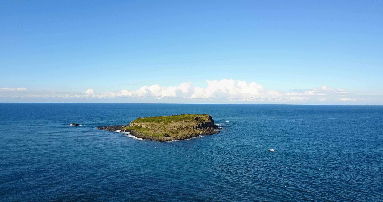 Cook_Island_Profile_Picure