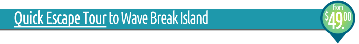 Quick Escape Tour - Kayaking and Snorkelling at Wave Break Island